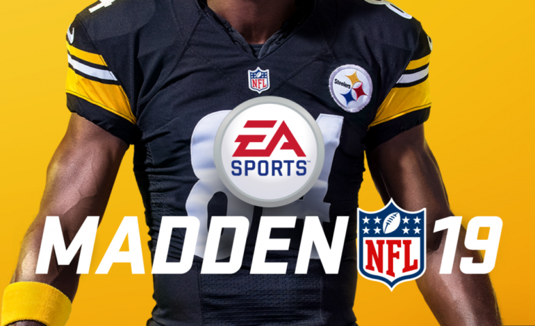 The Madden 19 Shooter was a Competitor in the Madden Classic Qualifier