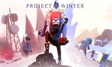 Project Winter Review